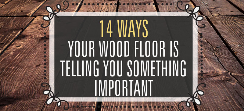 14 important ways in which your wood floor is trying to tell you something