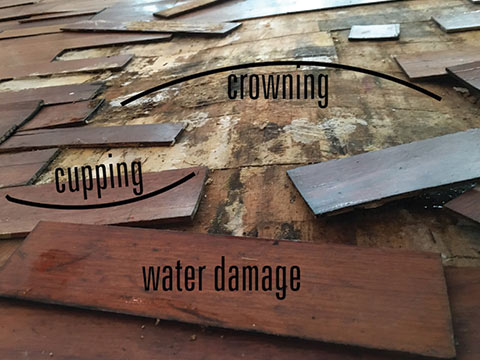 Crowning and cupping due to water damage on wood floors