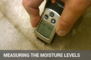measure moisture and humidity