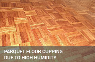 Cupped parquet floor due to high humidity